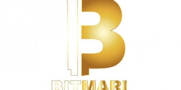 BitMari Logo - Send Money to Zimbabwe