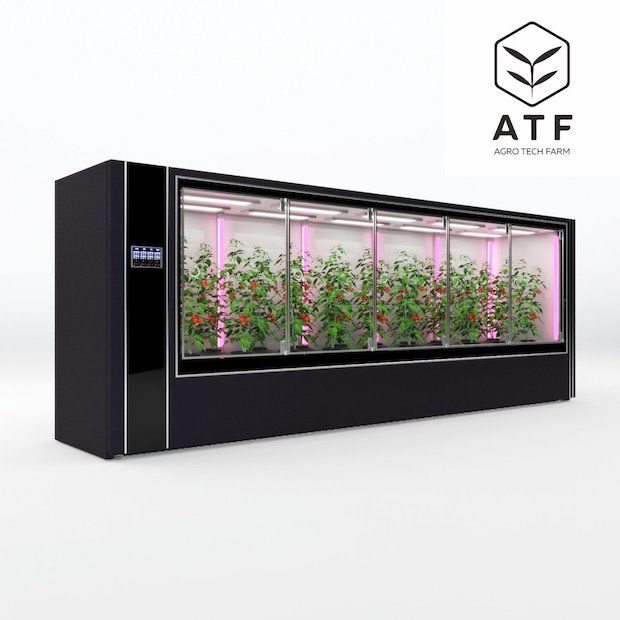 Agro Tech Farm Gewächshaus
