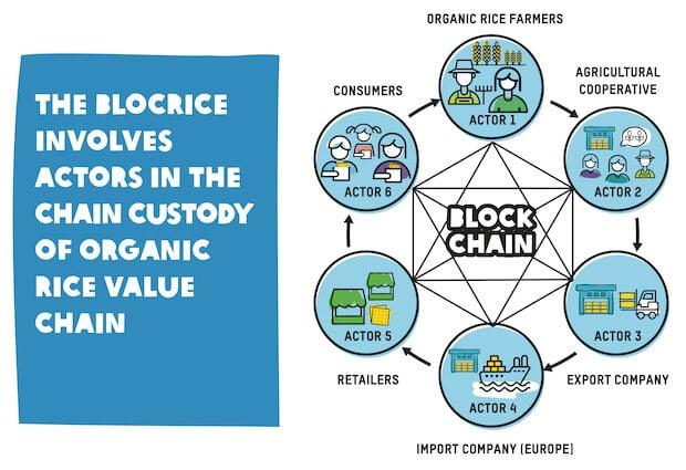BlocRice Blockchain für Reisbauern