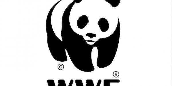 WWF - World Wildlife Fund Logo