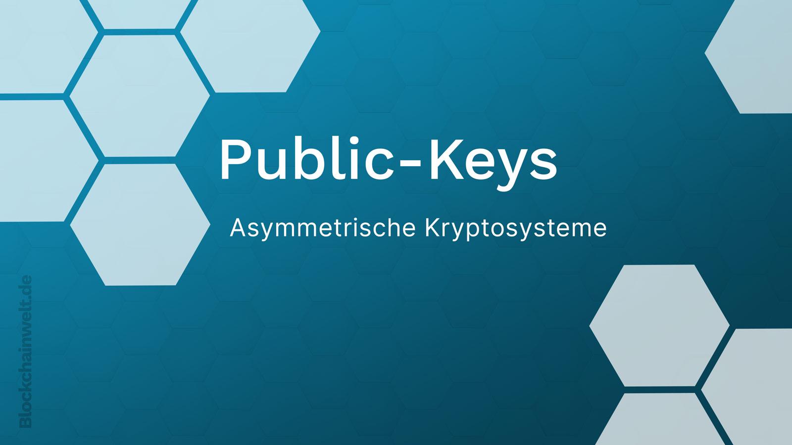 Public Key Kryptosysteme