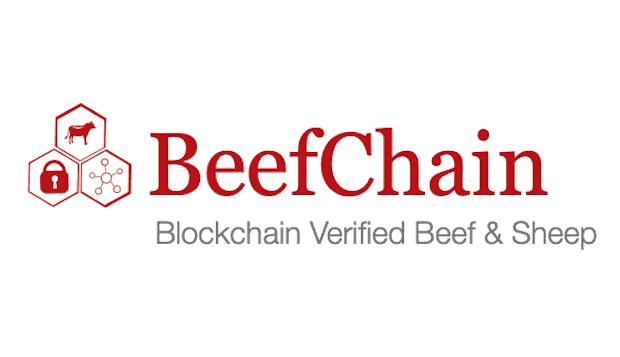 BeefChain Blockchain Logo