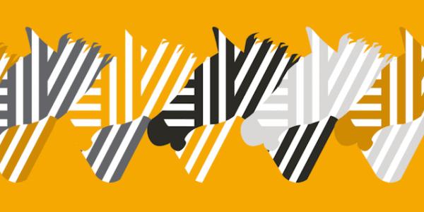 Der neue ZCash-Client Zebra @www.zfnd.org