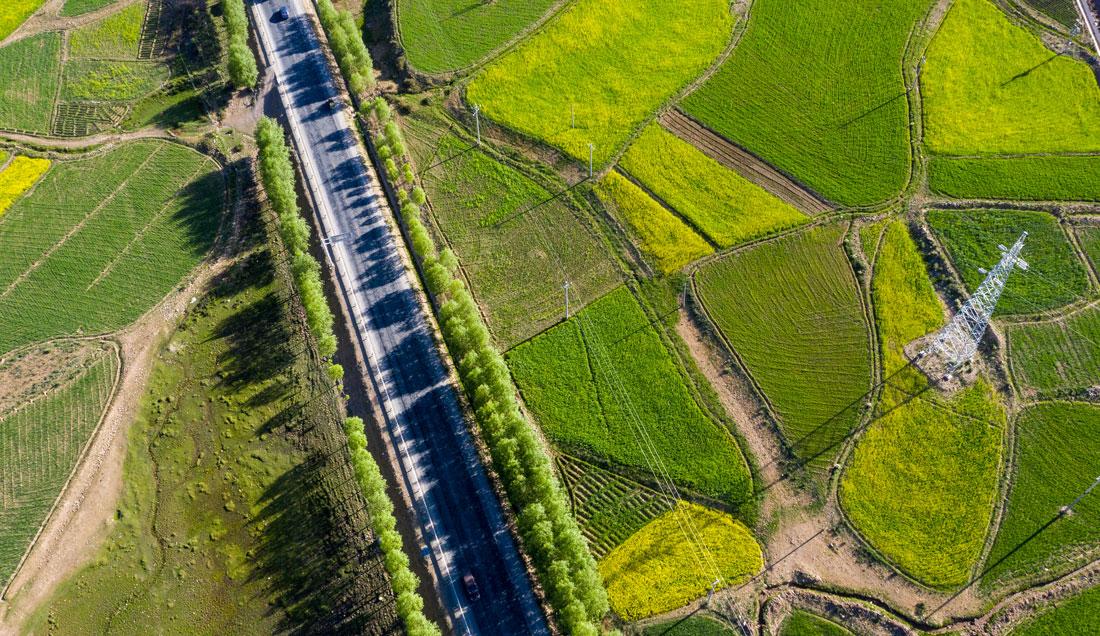 IOTA als Rückgrat einer nachhaltigen Welt