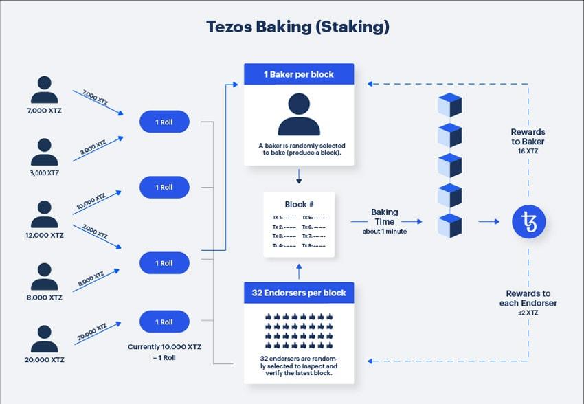 Tezos Baking / Staking erklärt