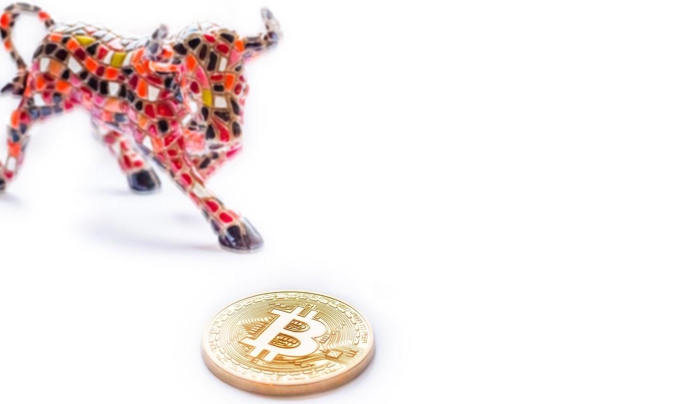 Bitcoin Bullen während Corona-Krise