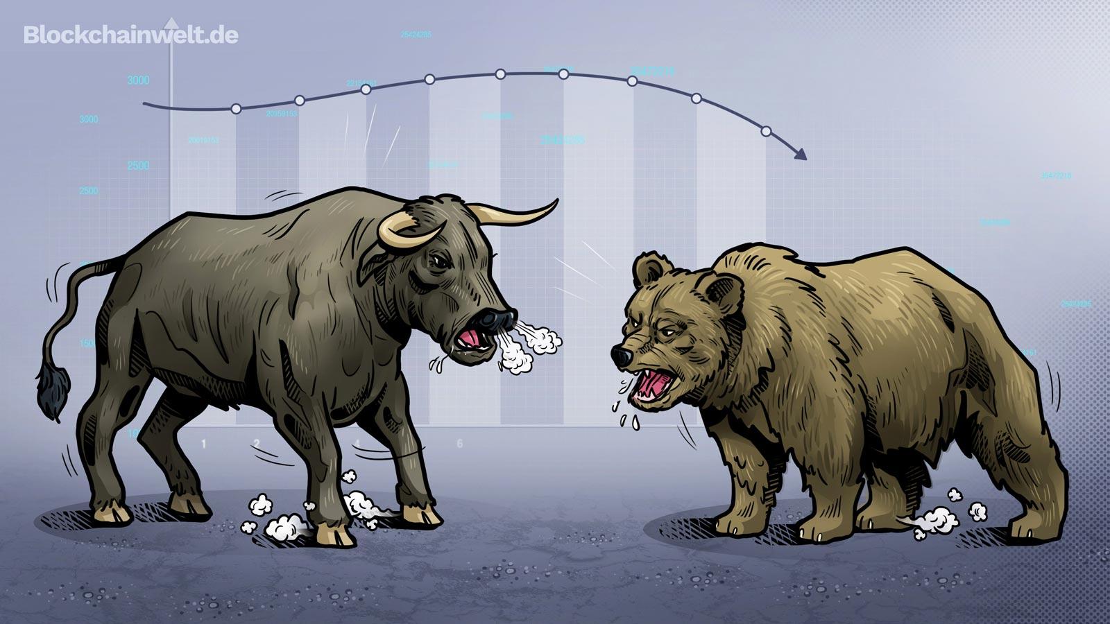 Bullen und Bären