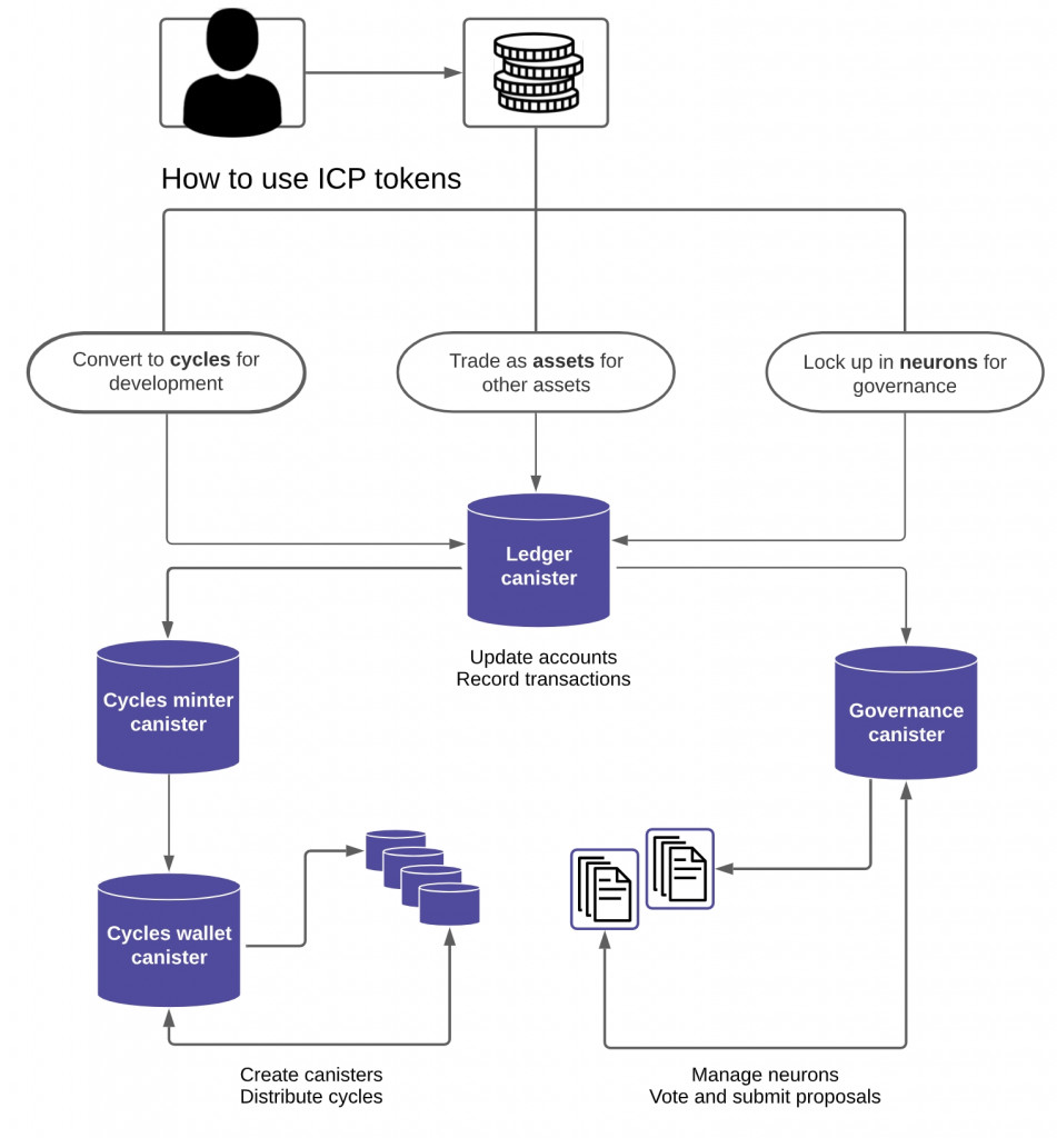 Software-Canister nutzen (Screenshot Dfinity)